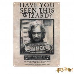 Grande Plaque Métallique Harry Potter - Have You Seen this Wizard ?
