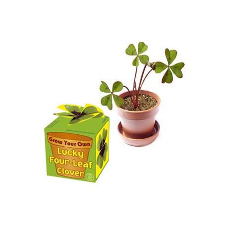 Un petit pot pour réaliser un trèfle porte-bonheur
