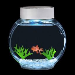 Fincredibles, Aquarium à Poisson Electronique