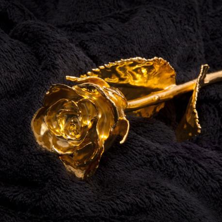 Véritable rose cueillie à la main et plongée dans de l'or à 24 carats