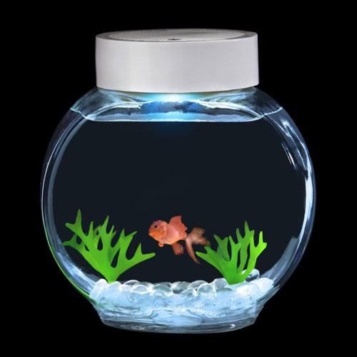Cadeaux originaux noel cadeau original noel cadeau fun for Jouet aquarium poisson